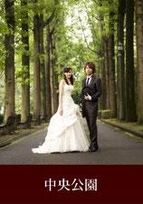 写真だけの結婚式 ロケ地 中央公園