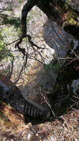 五合目小屋跡を超えての急な登り