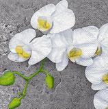 Servilletas decoradas con orquídeas para decoupage.