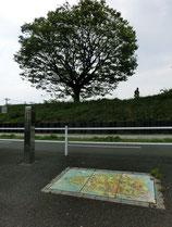 公園を出て鈴木街道を横切ると、狭山・境緑道が見えてきます。道路の上には周辺の地図も
