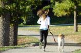 愛犬とのお散歩のあとで