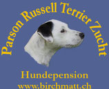 Hundepension Birchmatt Tenniken
