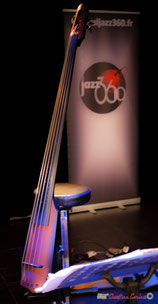 Omni Bass Ned Steinberger NXTa de Philippe Laccarrière