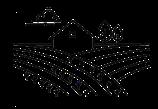Sprühen mit Drohne im Weinberg. Precision Spraying Agriculture,Pflanzenschutz Weinreben,Reben sprühen,Reben spritzen,Obstplantagen spritzen,Beeren spritzen, Gemüse spritzen, Sportrasen spritzen