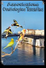 Associazione Ornitologica Tarantina