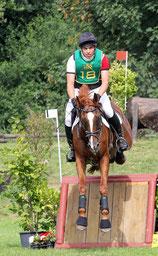 Priamos - Westfälisches Reitpferd Wallach von Praktiker Hamm NRW ES Sportpferde Eike Seehrich