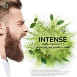 Mind Master Extreme Performance Poudre au guarana - pour un plein d'énergie rapide sans sucre - Mind Master Extreme - Complément alimentaire contenant : caféine, taurine, inositol, poudre d'aloe vera, acides aminés, vitamines, minéraux et coenzyme Q10.