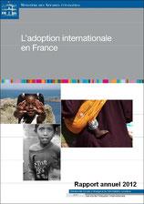 SAI Rapport annuel 2012