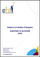 Rapport EFA 2013