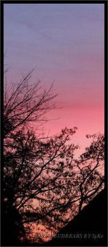ein roter Sonnenuntergang