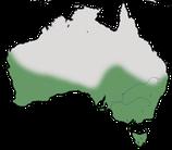 Karte zur Verbreitung des Weißgesicht-Trugschmätzer in Australien.