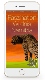 Faszination Wildnis Namibia Screen