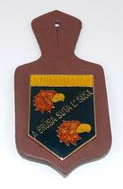 Insigne 3ème Régiment Alpin Alpini Battaglione Susa armée italienne