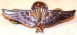 Insigne/badge qualification Basic Parachutist Republic of South Vietnam ARVN armée US