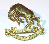 Cap badge 14th Canadian Hussars Canada WW2