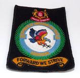 Insigne armée de l'air 150 Squadron Singapour
