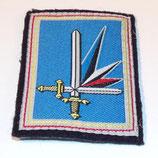 Insigne Région Terre Nord Est armée française (N°3)