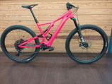 VTTAE Specialized Levo SL comp L