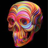 Gekleurde schedel
