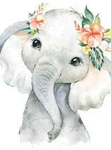 Lief olifantje