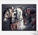 3 paardenhoofden