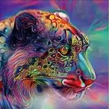Bijzondere tijger