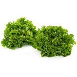 Batavia Salat / Stück