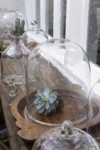 Glasglocke groß mit Loch