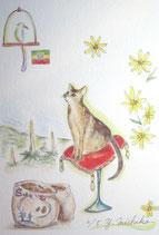 吉池三智子の猫の故郷3