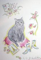 吉池三智子の猫の故郷5
