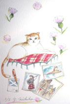 吉池三智子の猫の故郷4
