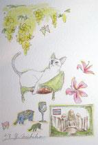 吉池三智子の猫の故郷6