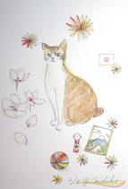 吉池三智子の猫の故郷7