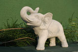 Elefant - Art. 349