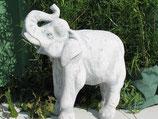 Elefant - Art. 152