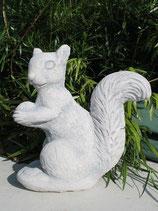 Eichhörnchen -  Art. 575