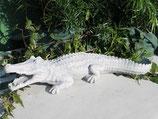 Krokodil - Art. 42