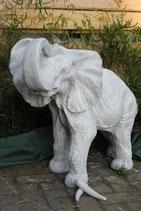 Elefant - Art. 669