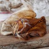 Rinderohren mit Fell ohne Muschel