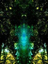 """""""Ich bin verbunden mit Mutter Erde"""" (7)"""