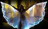 LED Isis Wings umrandet