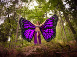 Butterfly Isis Wings violett (Schmetterlingsflügel)
