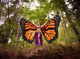 Butterfly Isis Wings orange (Schmetterlingsflügel)