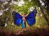Butterfly Isis Wings blau (Schmetterlingsflügel)