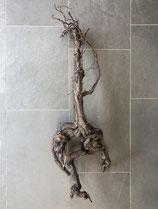 Rebenholz 60-80 cm
