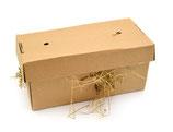 Schredderbox XL