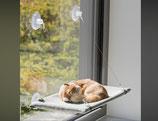 Hängematte Fensterscheibe