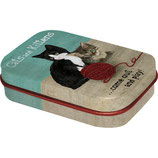Katze and Kittens  MINT BOX    4x6x1,6cm