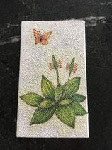 Streichholz-Schachtel grosse mit Blume