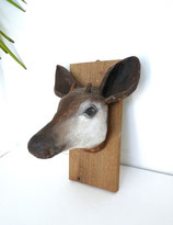 Okapi-Kopf aus Pappmaché